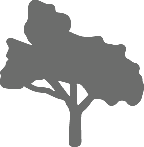 Wild Streets - Tree Icon PNG